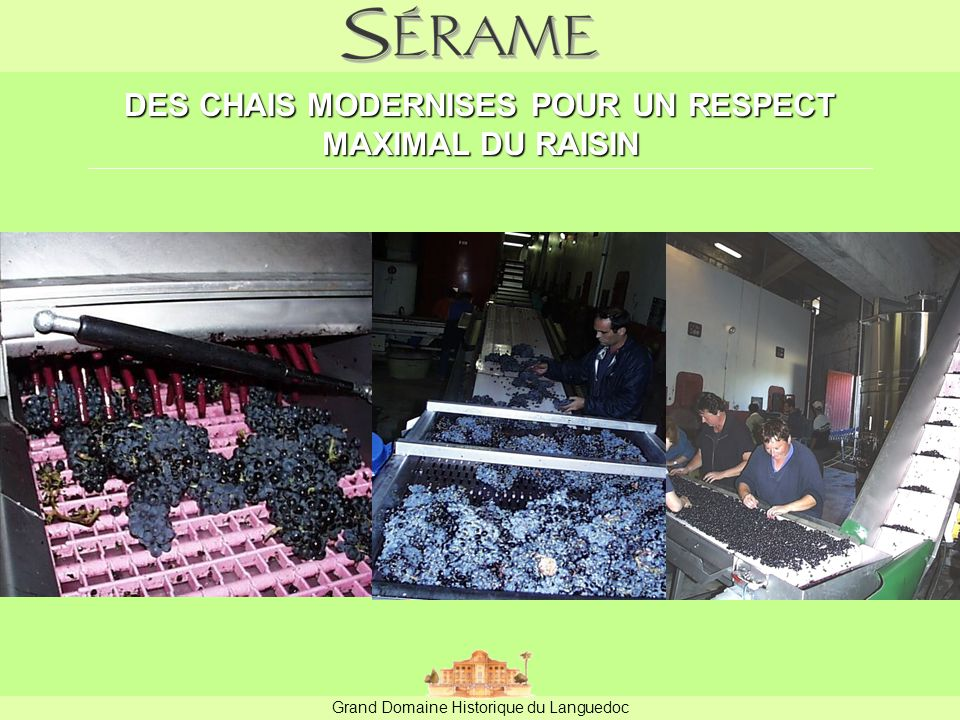 DES CHAIS MODERNISES POUR UN RESPECT MAXIMAL DU RAISIN