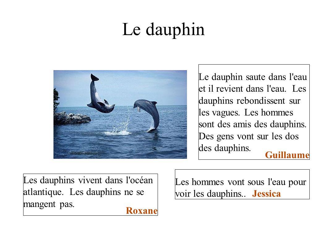 Le dauphin Le dauphin saute dans l eau et il revient dans l eau. Les dauphins rebondissent sur les vagues. Les hommes sont des amis des dauphins.