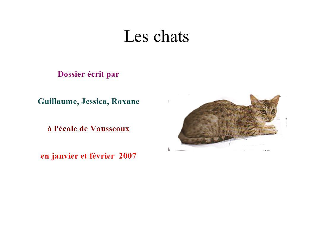Guillaume, Jessica, Roxane