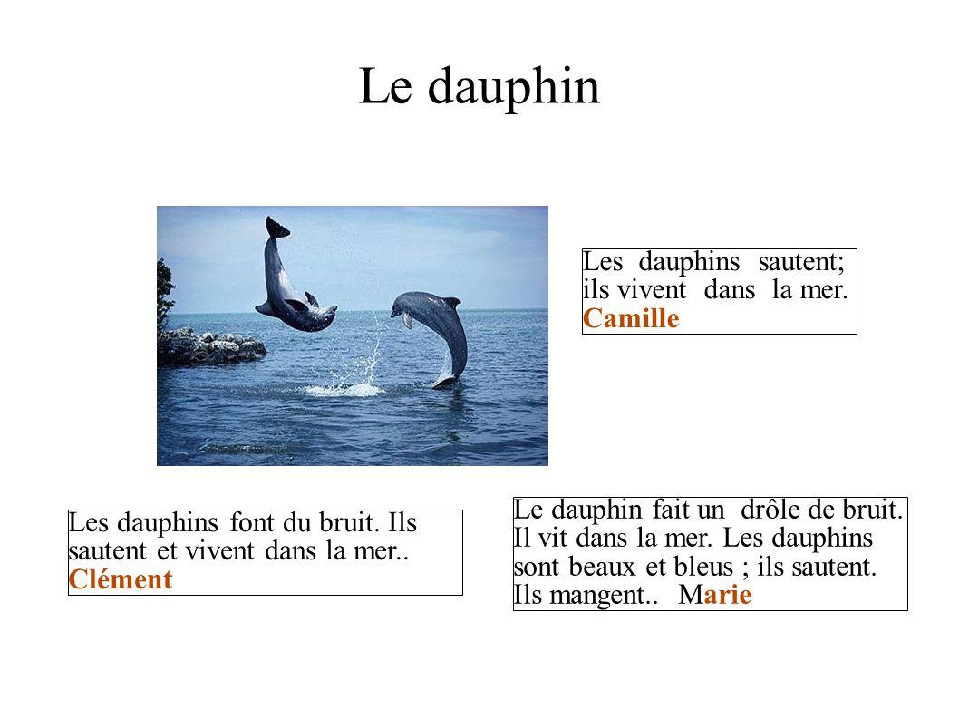Le dauphin Les dauphins sautent; ils vivent dans la mer. Camille