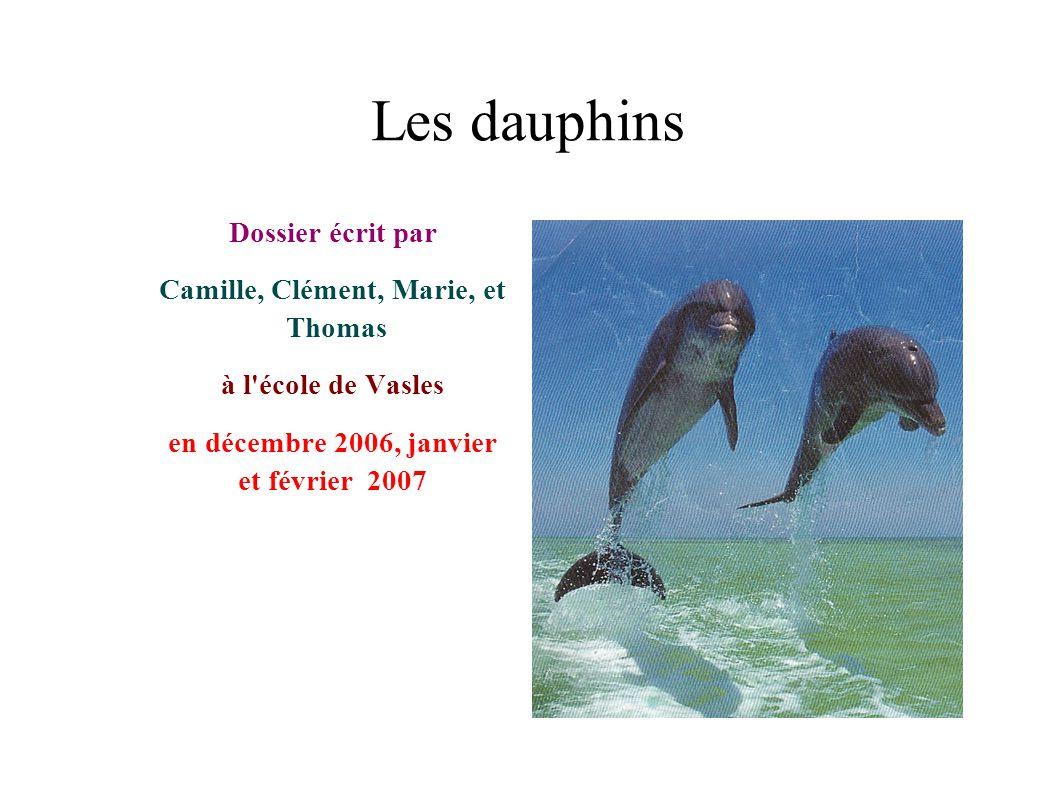 Camille, Clément, Marie, et