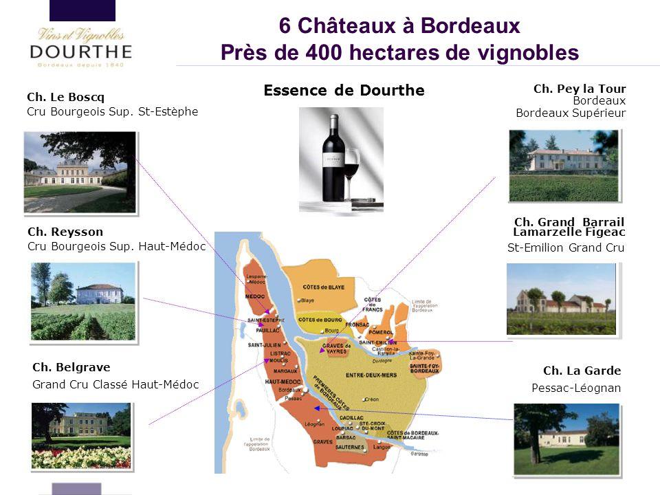 Près de 400 hectares de vignobles