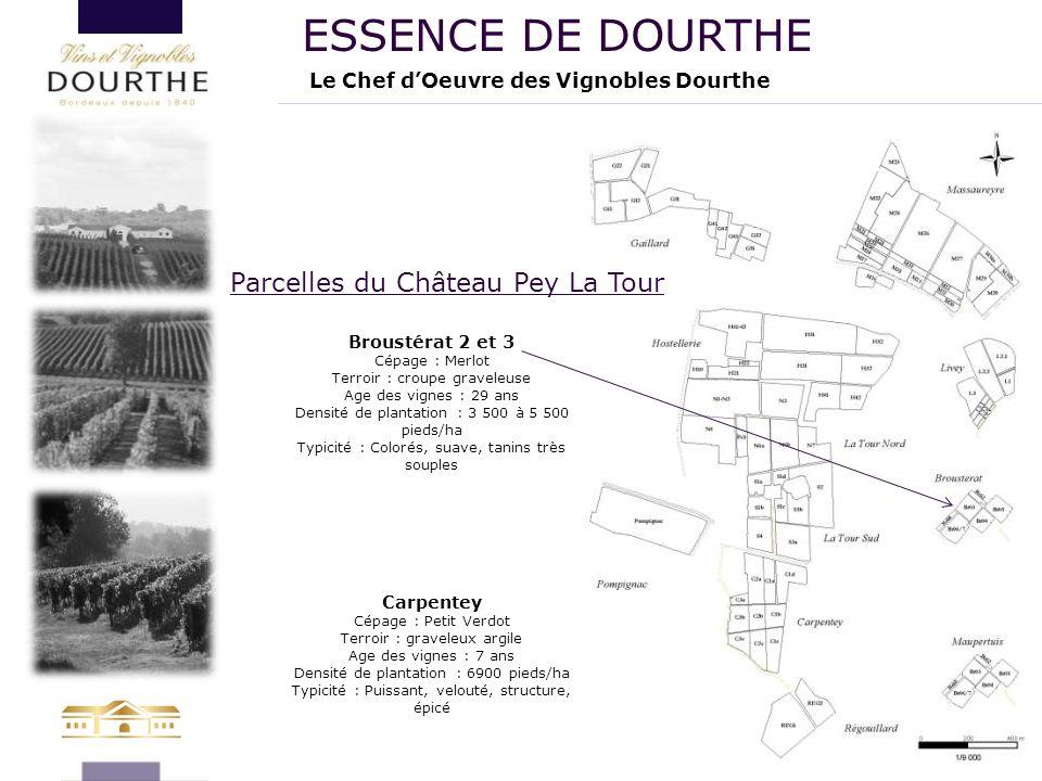 ESSENCE DE DOURTHE Parcelles du Château Pey La Tour