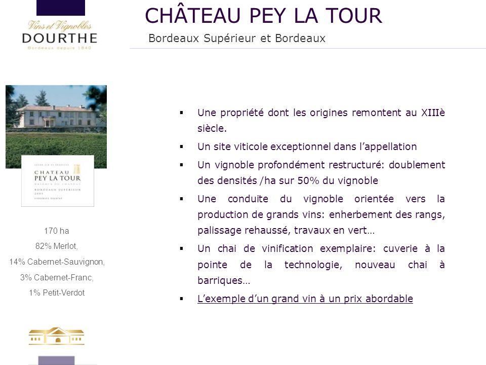 CHÂTEAU PEY LA TOUR Bordeaux Supérieur et Bordeaux