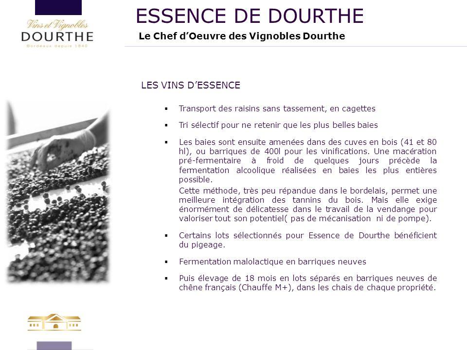 ESSENCE DE DOURTHE Le Chef d'Oeuvre des Vignobles Dourthe