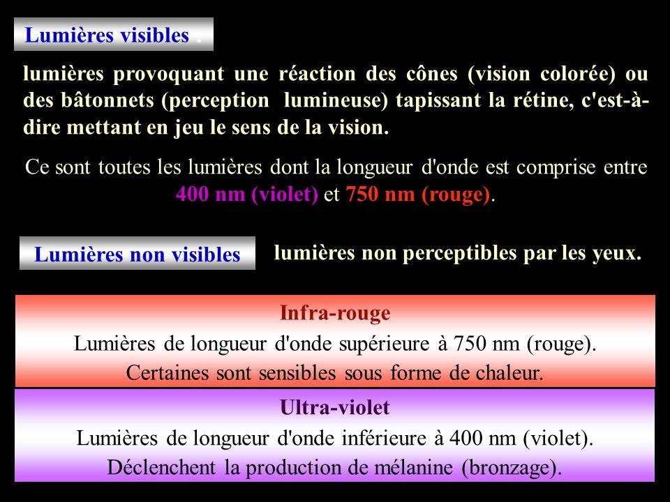 Lumières visibles : Lumières non visibles Infra-rouge Ultra-violet