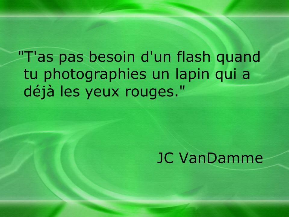 T as pas besoin d un flash quand tu photographies un lapin qui a déjà les yeux rouges.