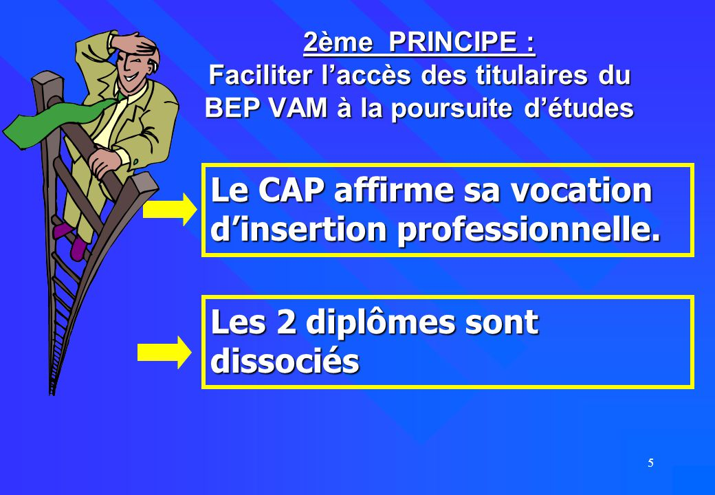 Le CAP affirme sa vocation d'insertion professionnelle.