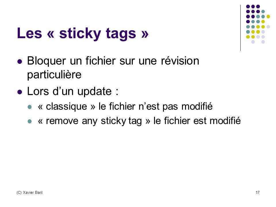 Les « sticky tags » Bloquer un fichier sur une révision particulière