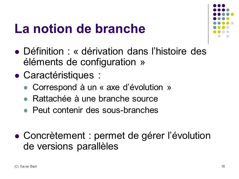 La notion de branche Définition : « dérivation dans l'histoire des éléments de configuration » Caractéristiques :