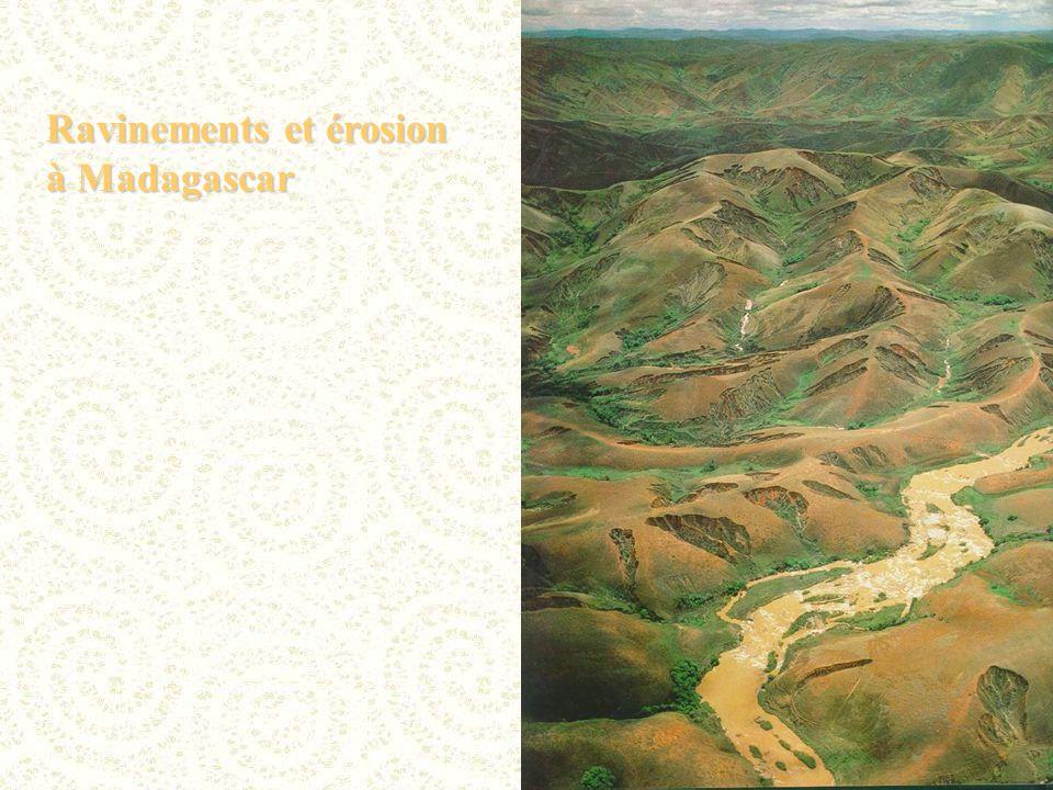 Ravinements et érosion à Madagascar