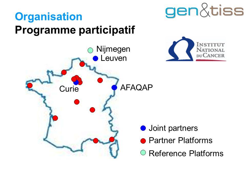 Organisation Programme participatif