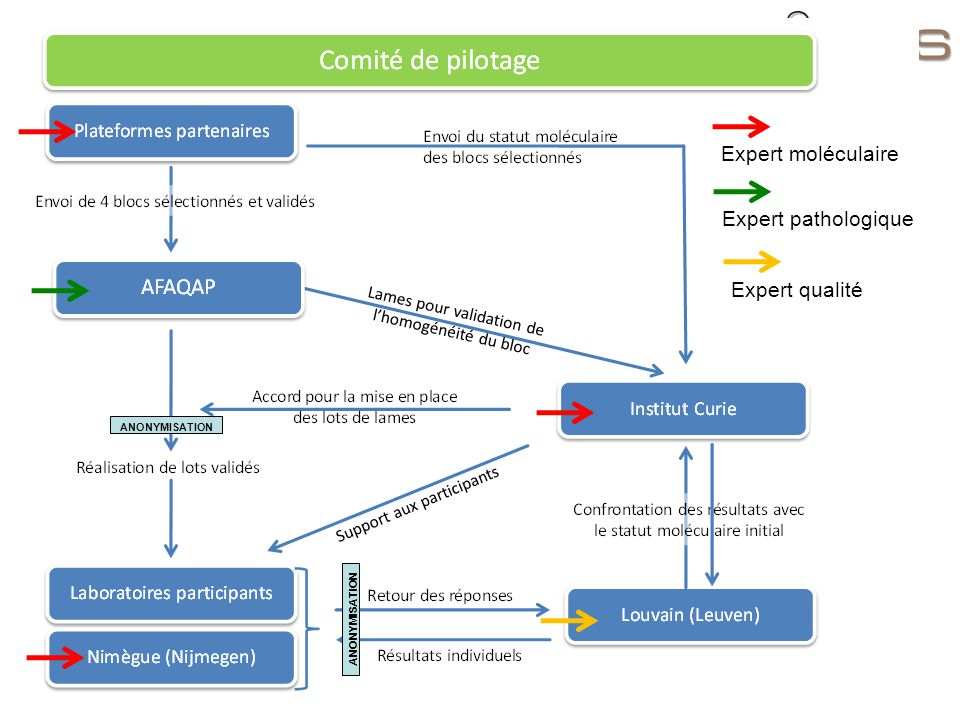 Expert moléculaire Expert pathologique Expert qualité ANONYMISATION