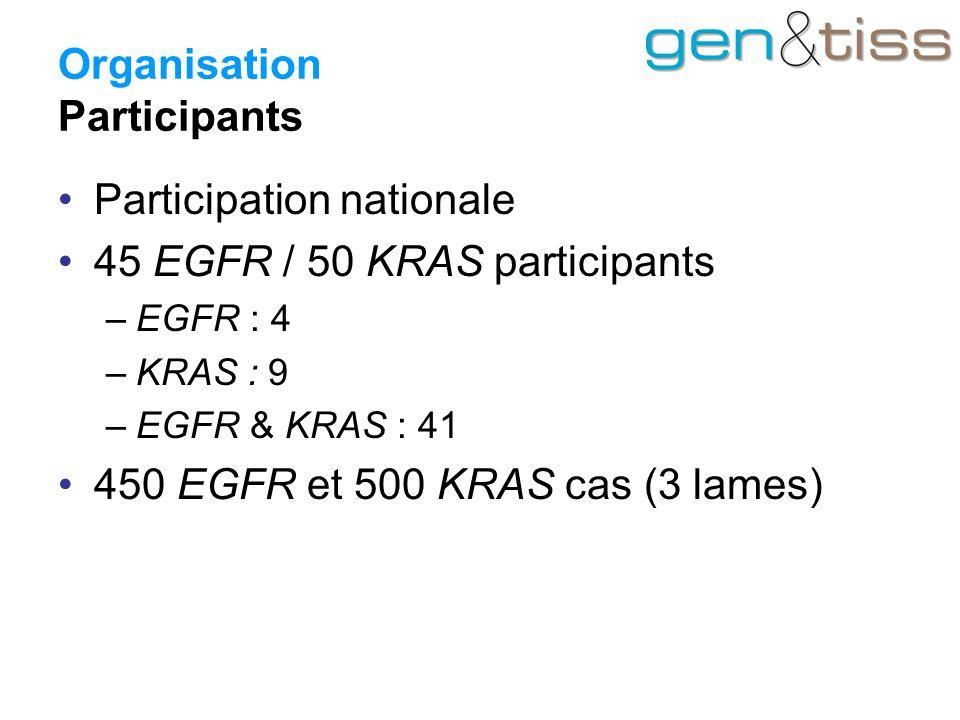 Organisation Participants