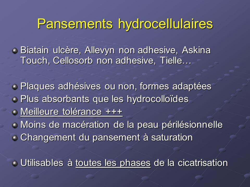 Pansements hydrocellulaires