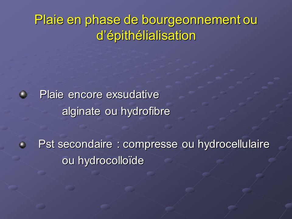Plaie en phase de bourgeonnement ou d'épithélialisation