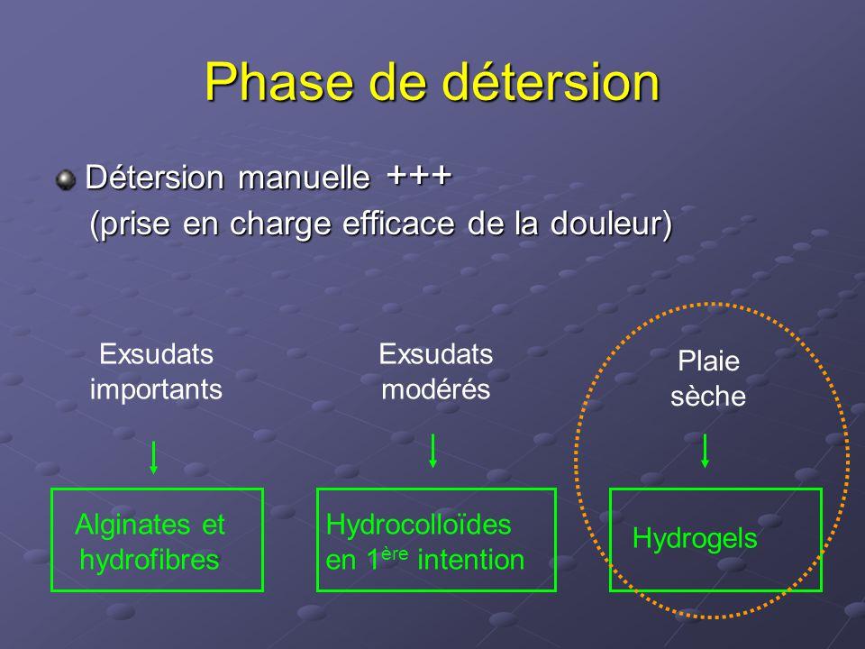 Alginates et hydrofibres