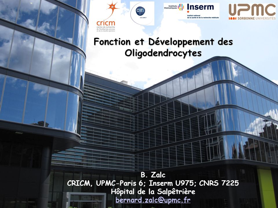 CRICM, UPMC-Paris 6; Inserm U975; CNRS 7225 Hôpital de la Salpêtrière