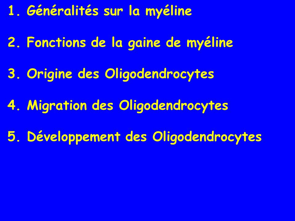1. Généralités sur la myéline