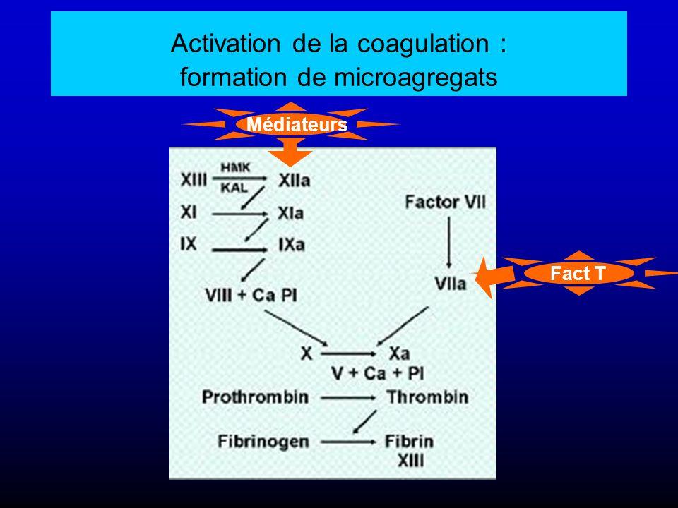Activation de la coagulation : formation de microagregats
