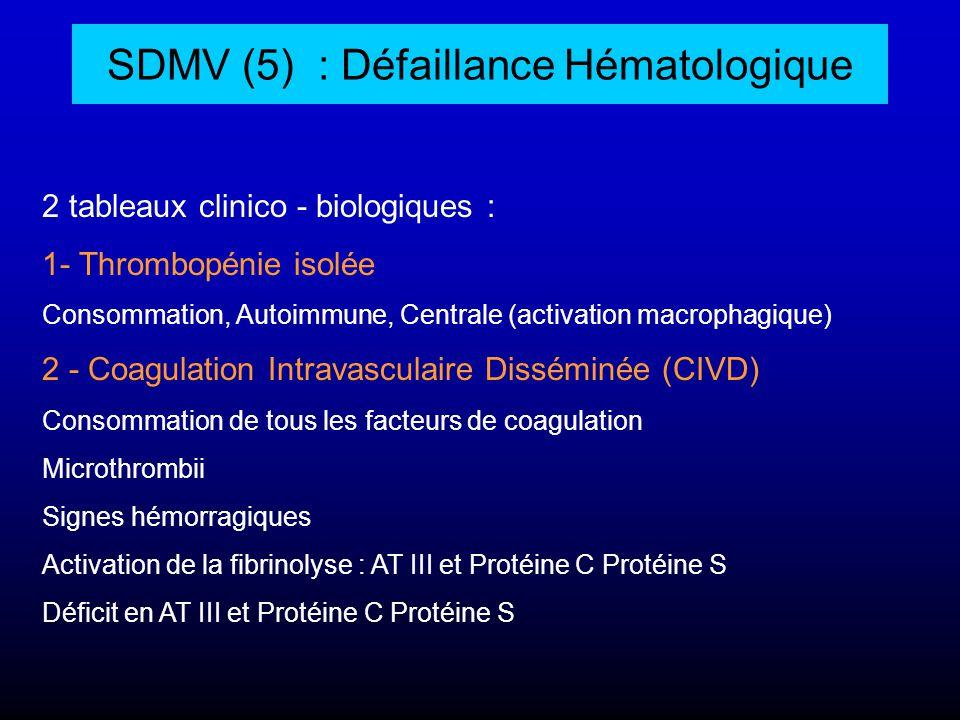 SDMV (5) : Défaillance Hématologique