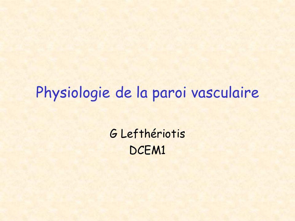 Physiologie de la paroi vasculaire