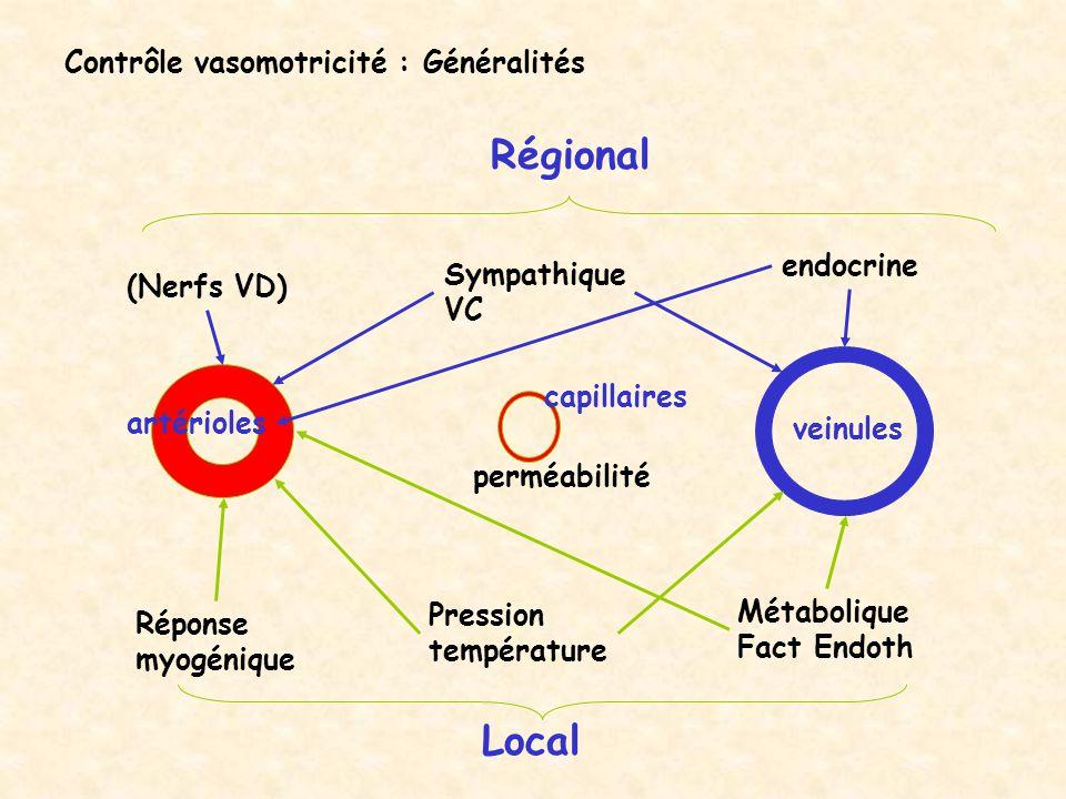 Contrôle vasomotricité : Généralités