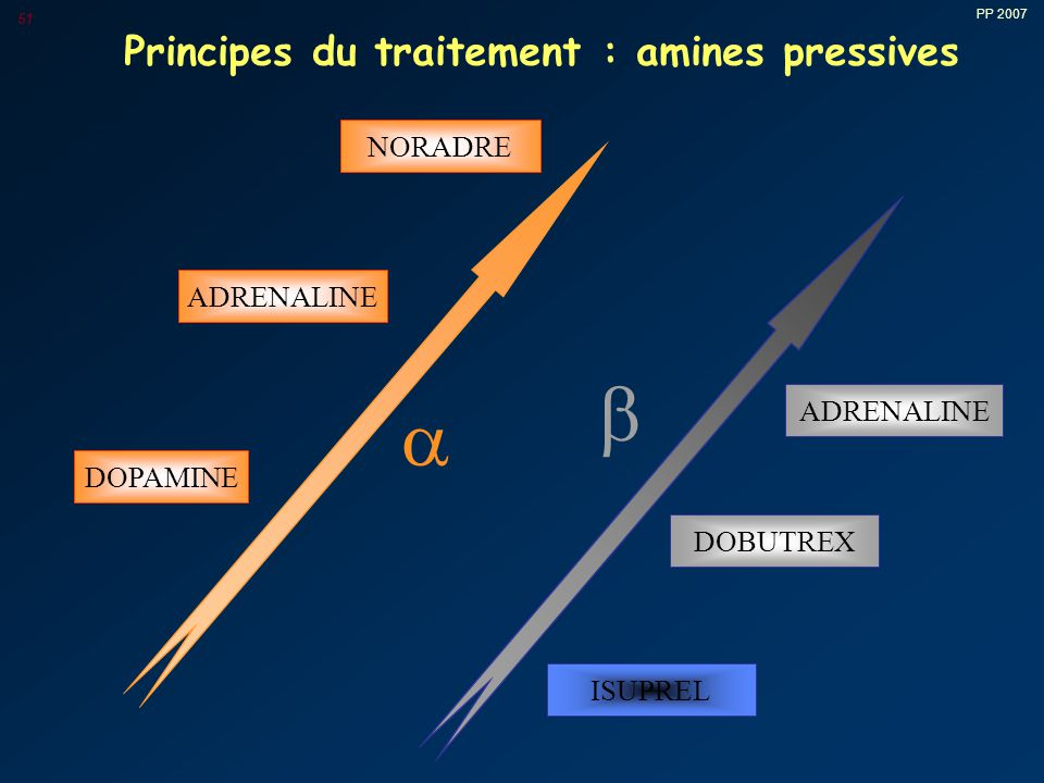 Principes du traitement : amines pressives