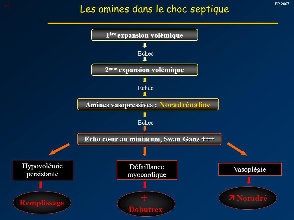 + Les amines dans le choc septique  Noradré Remplissage Dobutrex
