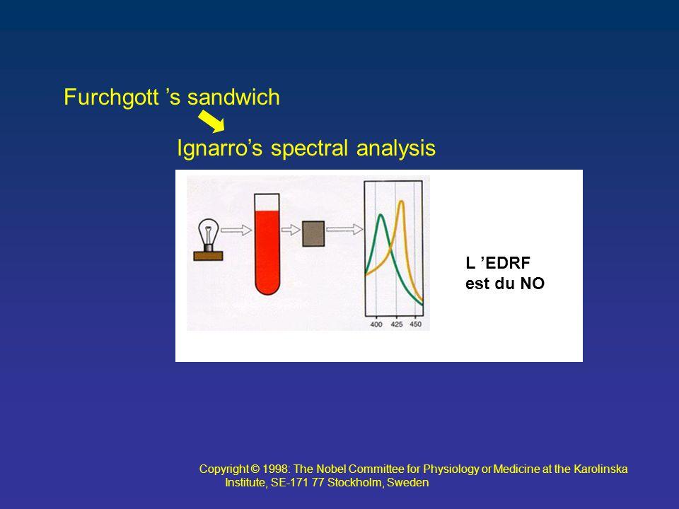 Ignarro's spectral analysis