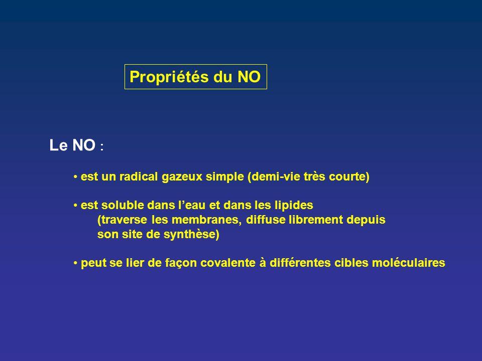 Propriétés du NO Le NO : est un radical gazeux simple (demi-vie très courte) est soluble dans l'eau et dans les lipides.