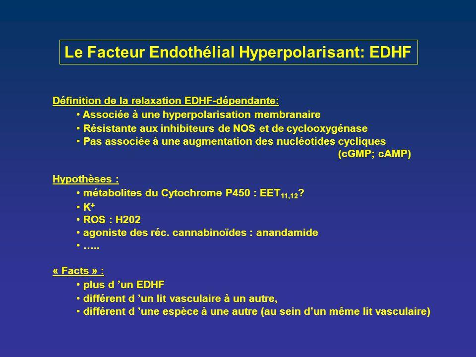 Le Facteur Endothélial Hyperpolarisant: EDHF