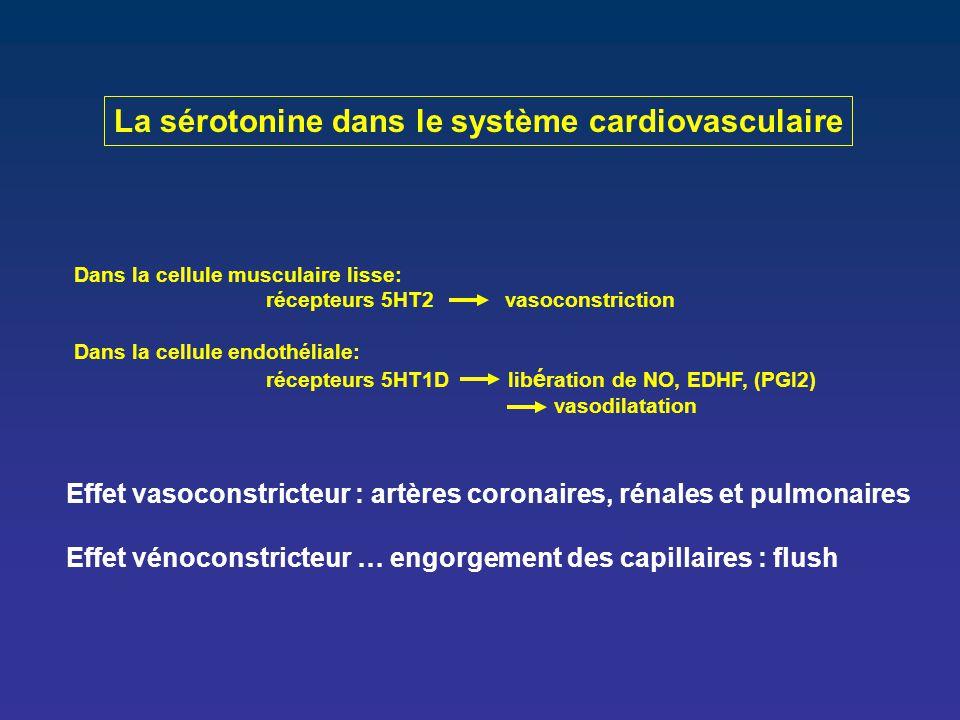 La sérotonine dans le système cardiovasculaire
