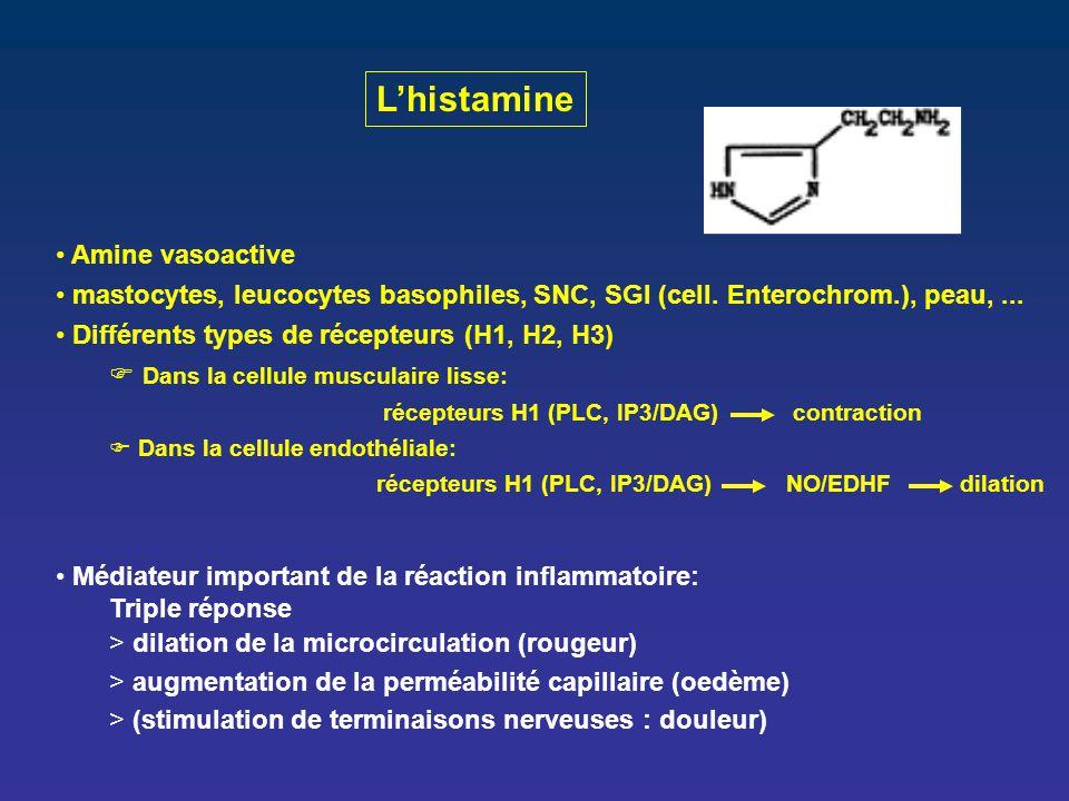 L'histamine Amine vasoactive