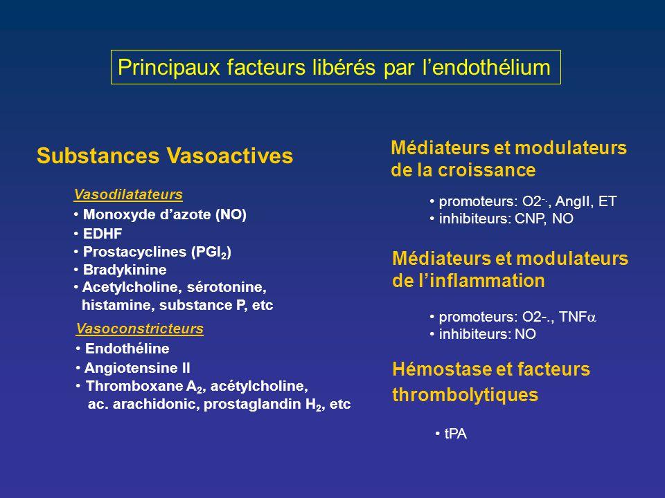 Principaux facteurs libérés par l'endothélium