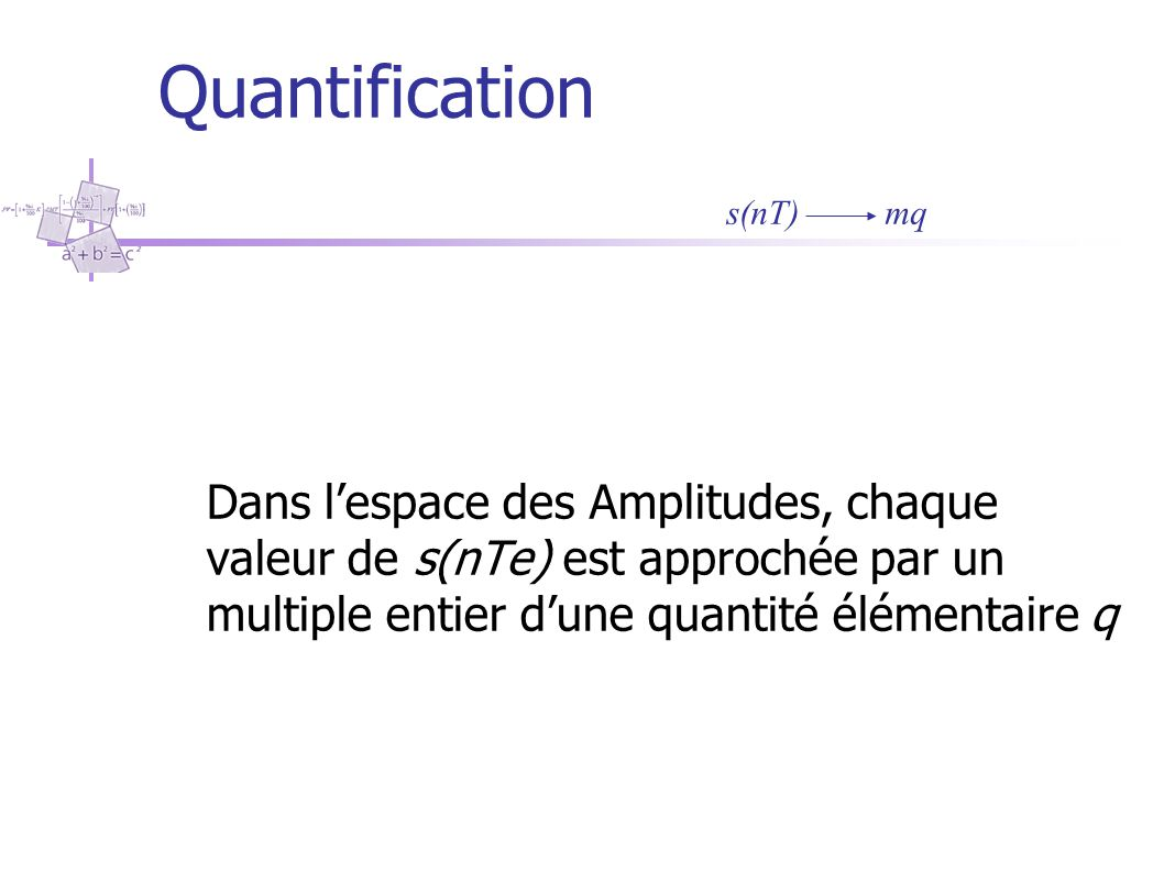 Quantification s(nT) mq.