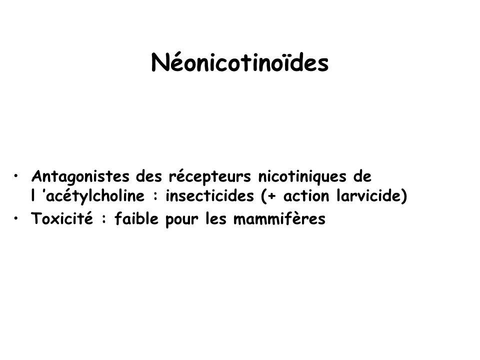 Néonicotinoïdes Antagonistes des récepteurs nicotiniques de l 'acétylcholine : insecticides (+ action larvicide)