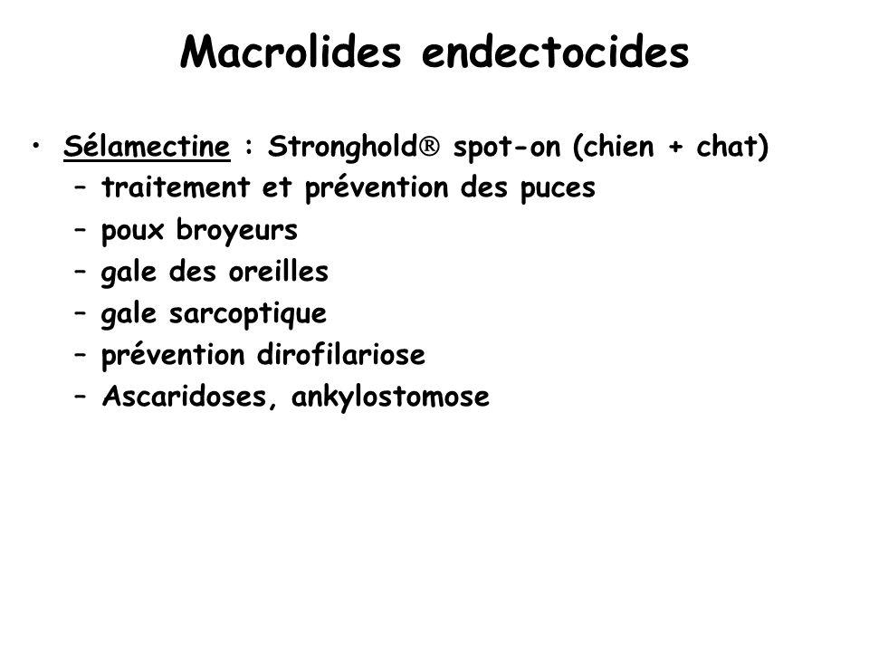 Macrolides endectocides
