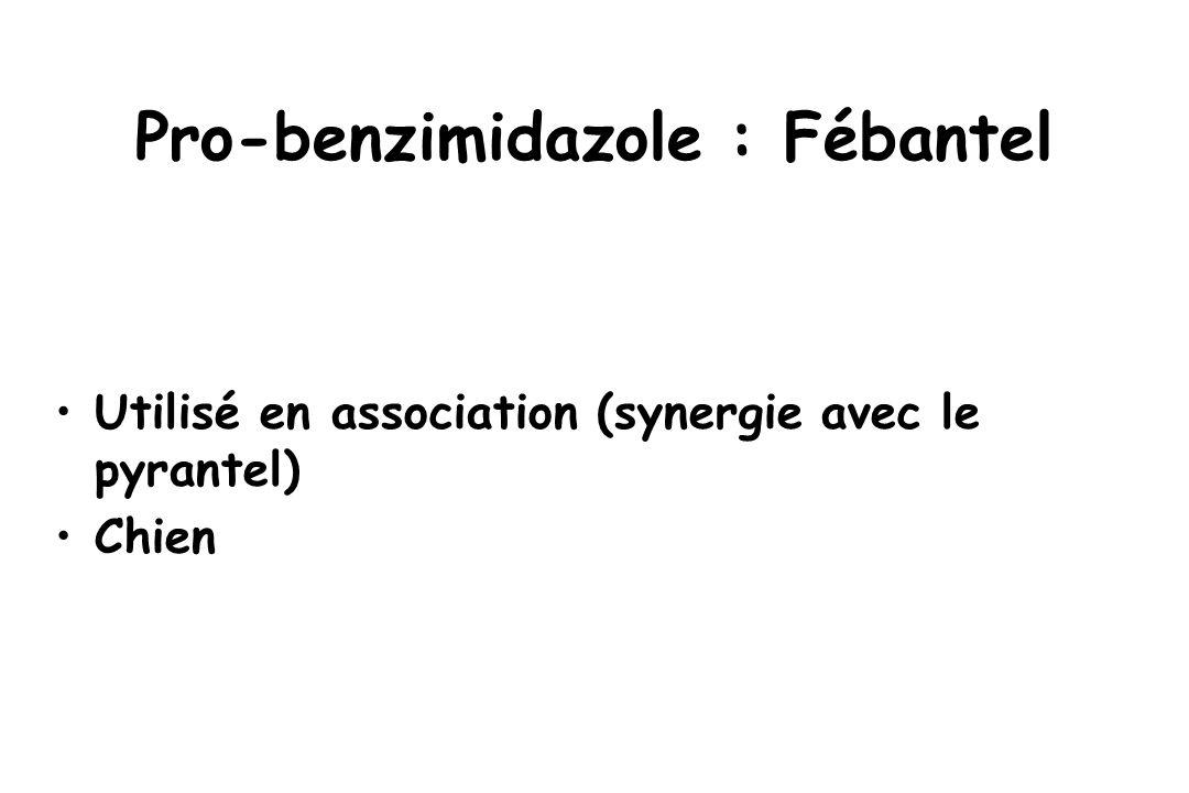 Pro-benzimidazole : Fébantel