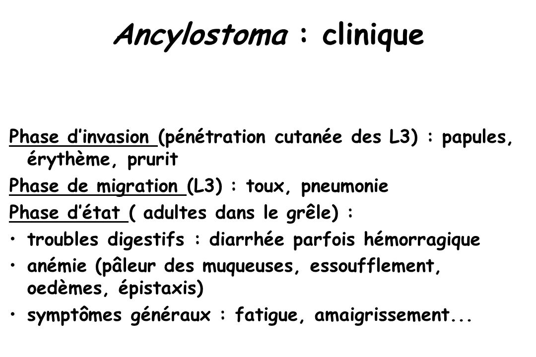 Ancylostoma : clinique