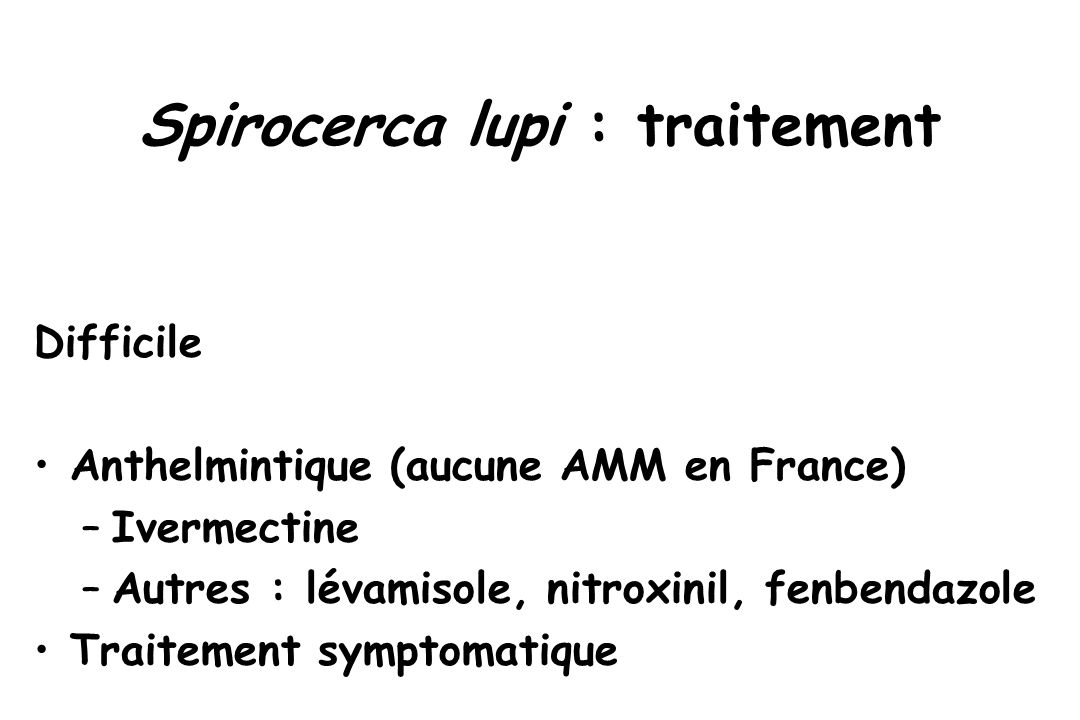 Spirocerca lupi : traitement