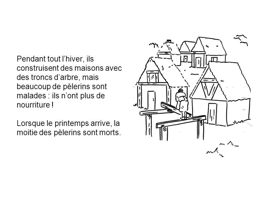 Pendant tout l'hiver, ils construisent des maisons avec des troncs d'arbre, mais beaucoup de pèlerins sont malades : ils n'ont plus de nourriture .