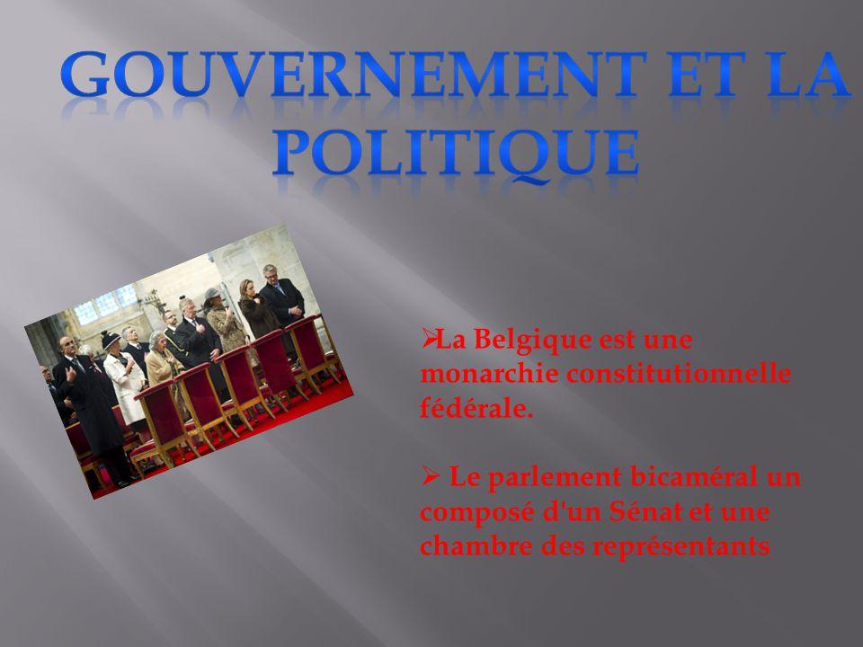 gouvernement et la politique