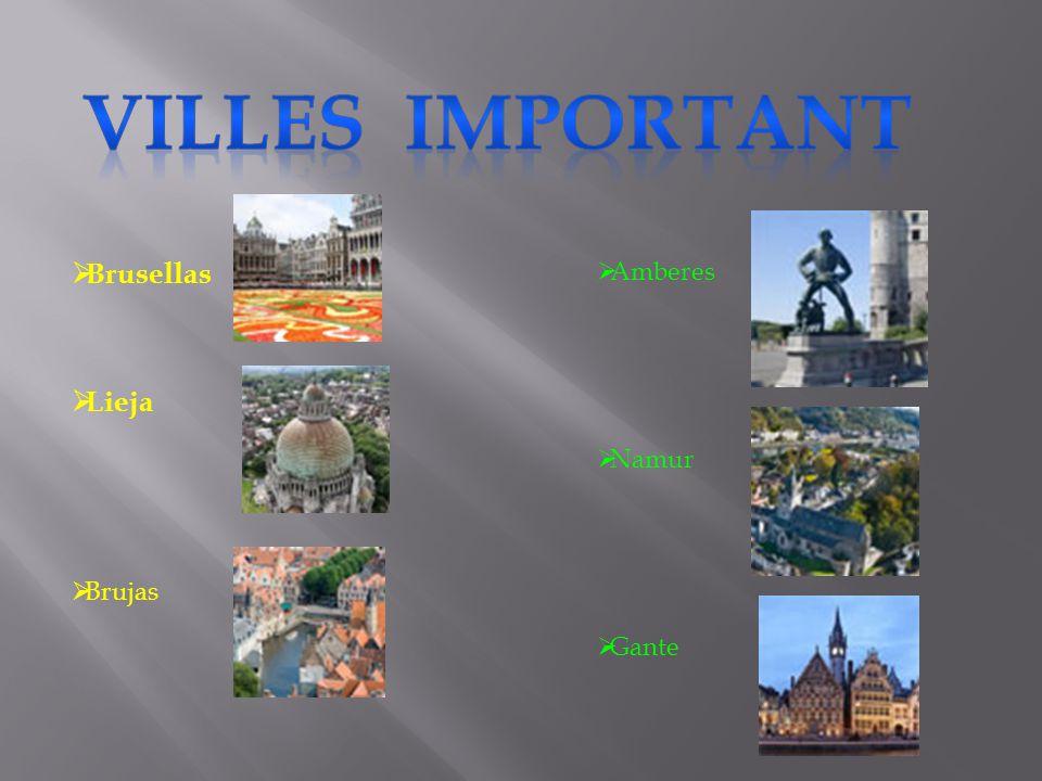 Villes important Brusellas Lieja Brujas Amberes Namur Gante