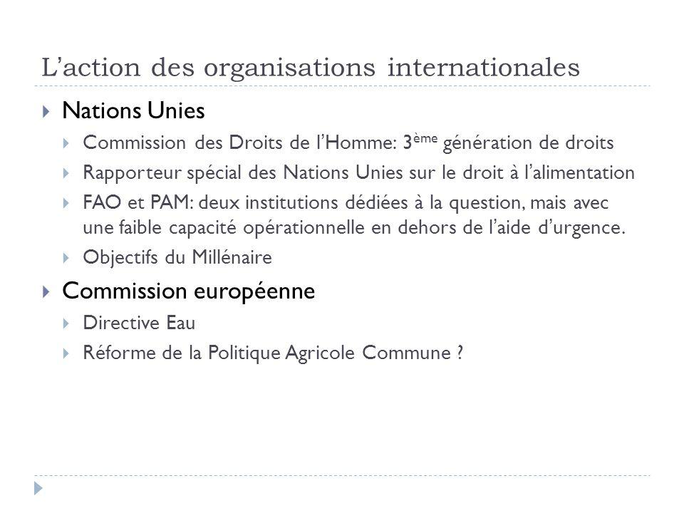 L'action des organisations internationales