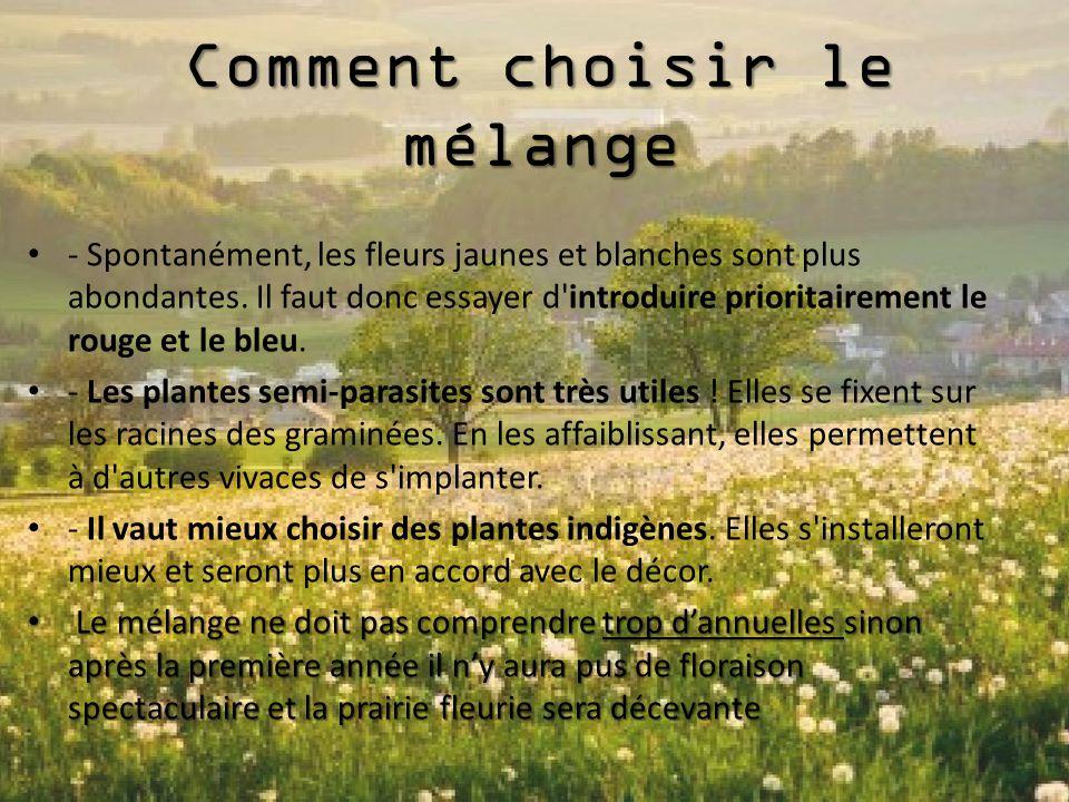 Prairies fleuries ppt video online t l charger - Faut il couper les pivoines apres floraison ...