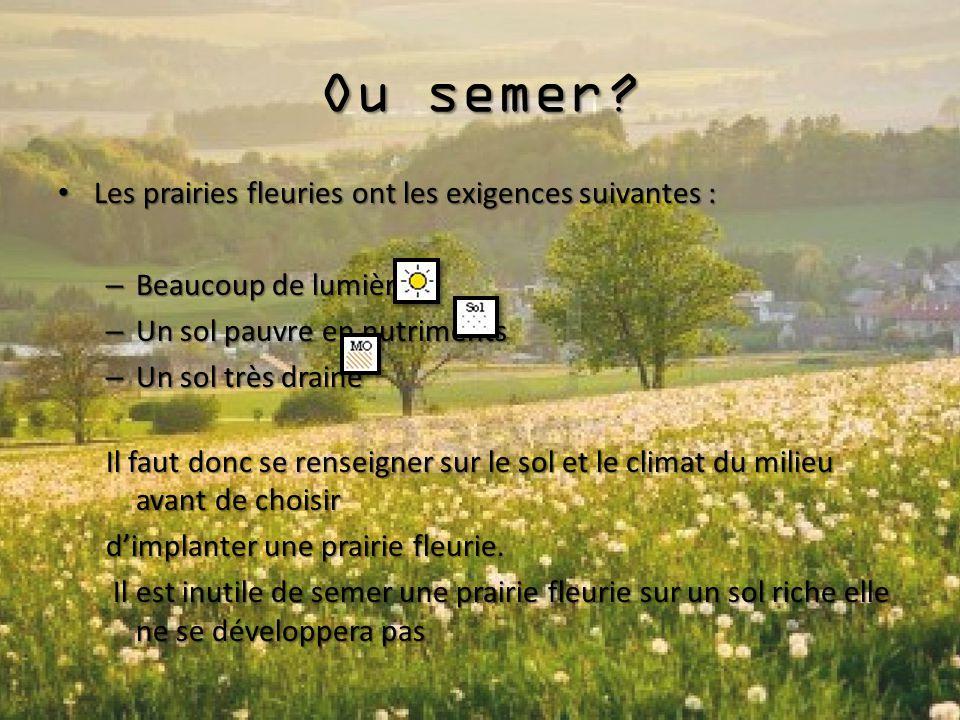 Ou semer Les prairies fleuries ont les exigences suivantes :