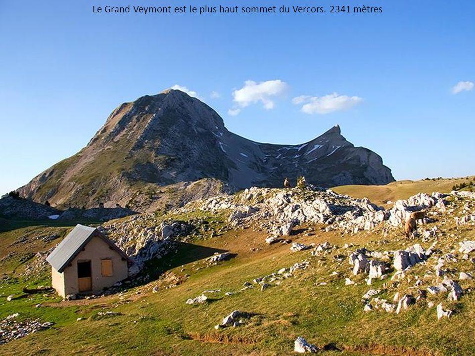 Le Grand Veymont est le plus haut sommet du Vercors. 2341 mètres