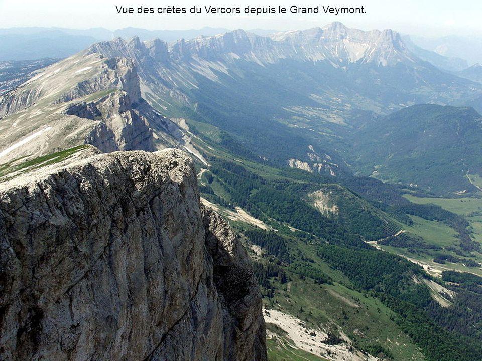 Vue des crêtes du Vercors depuis le Grand Veymont.