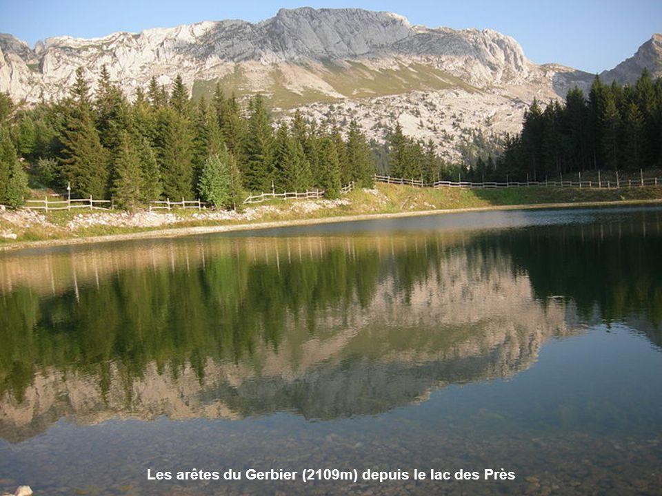 Les arêtes du Gerbier (2109m) depuis le lac des Près